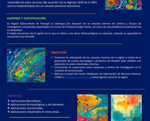 Proyecto CVMAR+I